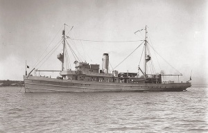 USS-Vireo_(AM_52)