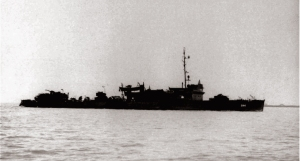 USS-Williamson(DD-244)